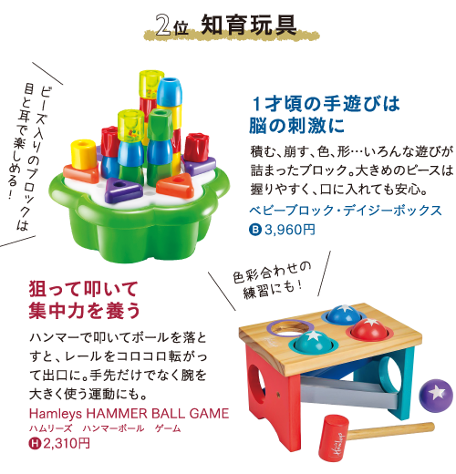 ベスト2 知育玩具