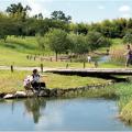 【関西ママおすすめ】自然散策やピクニックに 関西の広~い公園6選