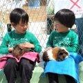 【東京ママおすすめ】生後6ヶ月未満の子どもとのお出かけにオススメの場所5選